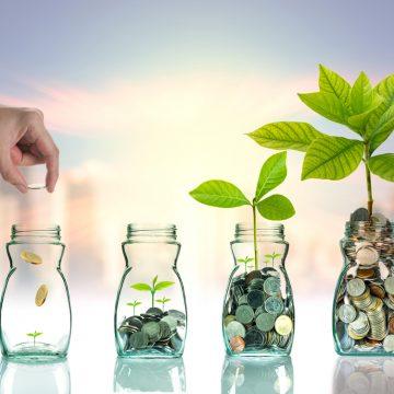 Finanční gramotnost 2: Tvorba a zhodnocování majetku